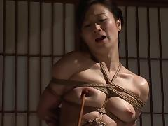 Bondage, Adorable, Asian, BDSM, Bondage, Bound