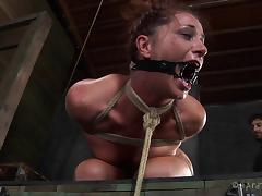 Hot babe Cici Rhodes almost cries during the gruesome bondage session
