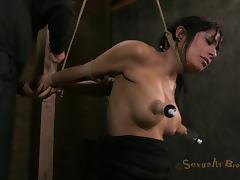 Bondage, BDSM, Big Tits, Bondage, Boobs, Bound