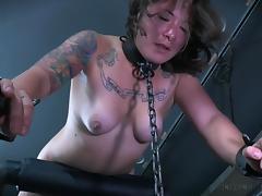 All, Babe, BDSM, Brunette, Domination, Punishment